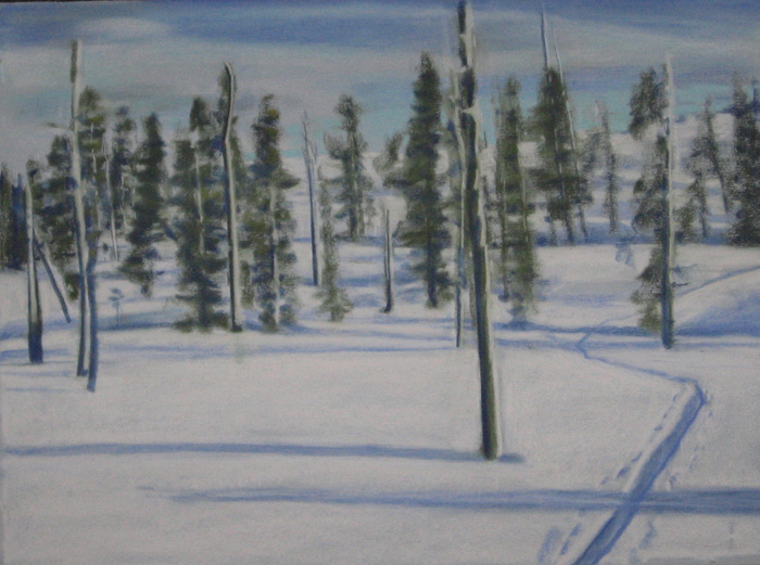 drawing titled Burned Forest Ski Trail